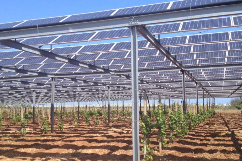Impianto fotovoltaico per un Vigneto